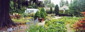 The Potting Shed Tearoom, Inshriach Nursery